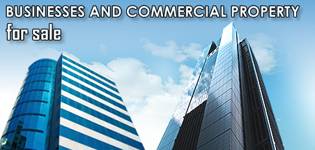 Business, Franchises, Real Estate